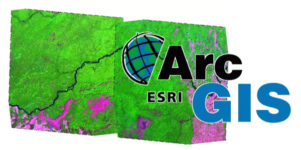 Tutorial: Como fazer Mosaico de Imagens no ArcGIS